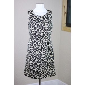 Banana Republic Leopard Print Career Dress - Sz 2